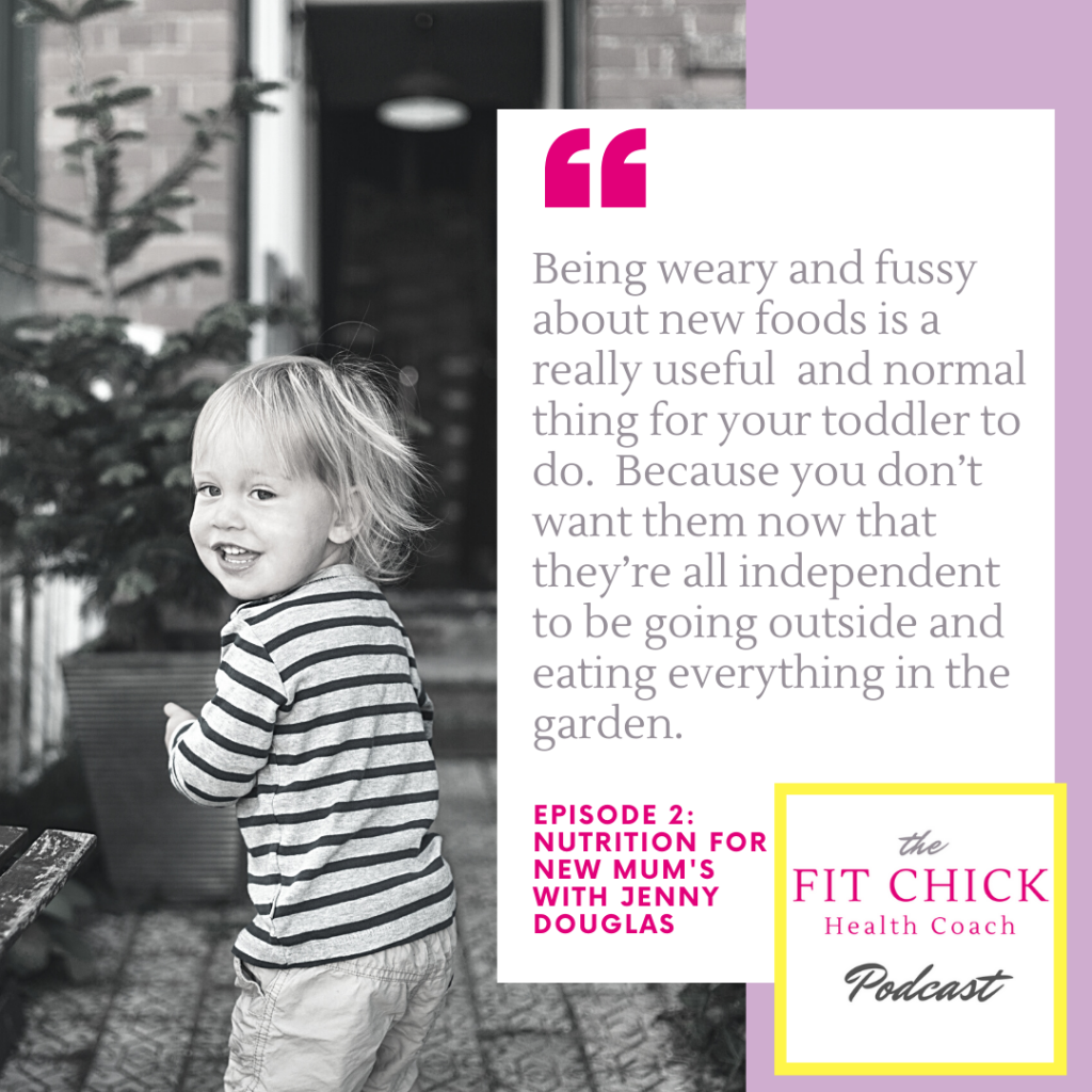The fit chick health coach podcast